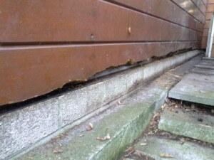 U heeft snel last van houtrot aan uw tuinhuis of blokhut, als u geen dakgoot bevestigd!