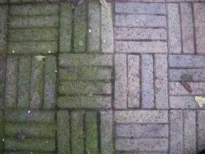 Groene aanslag veroorzaakt door overmatig water afvloei van een veranda dak.